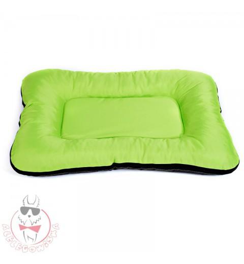 Ponton zielony