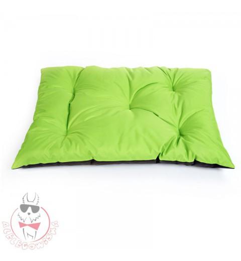 Poduszka zielona